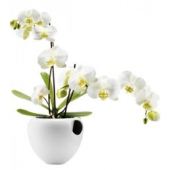 Eva Solo Orkide potte hvid
